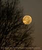 Moonset 12-18-13 (3)