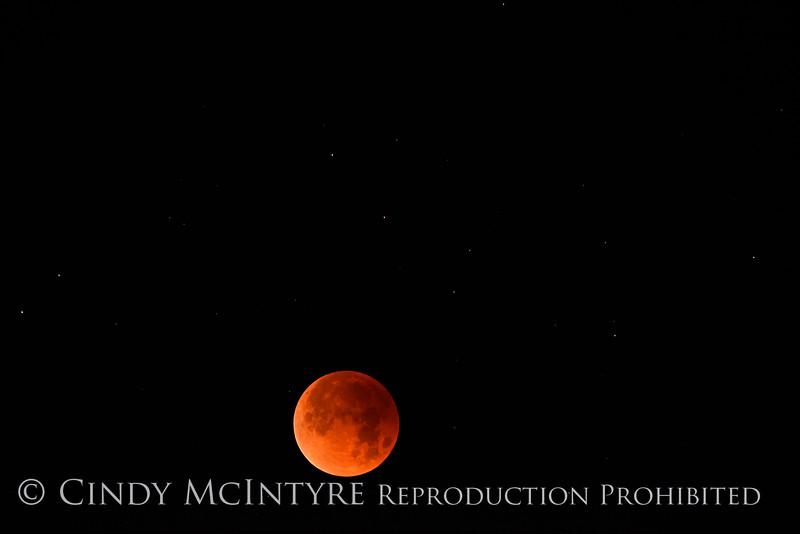 Lunar eclipse 1-31-18 Paso Robles CA (5)