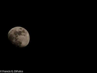 Moonlight December 2012