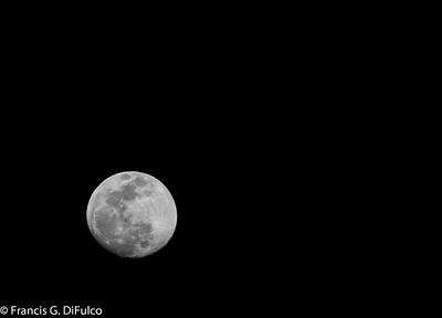 moonlight may 2015