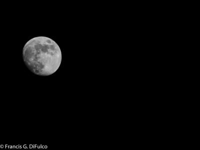 moonlight november 2012