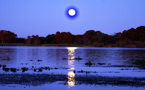Moonrise over Lake Florida