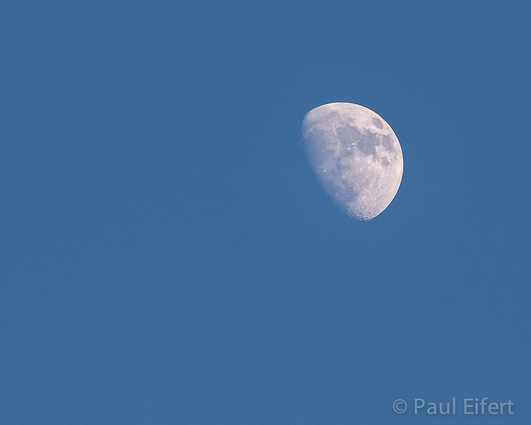 The waxing moon sits in the blue early evening sky at the end of May, 2012