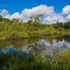 Kayley's Pond