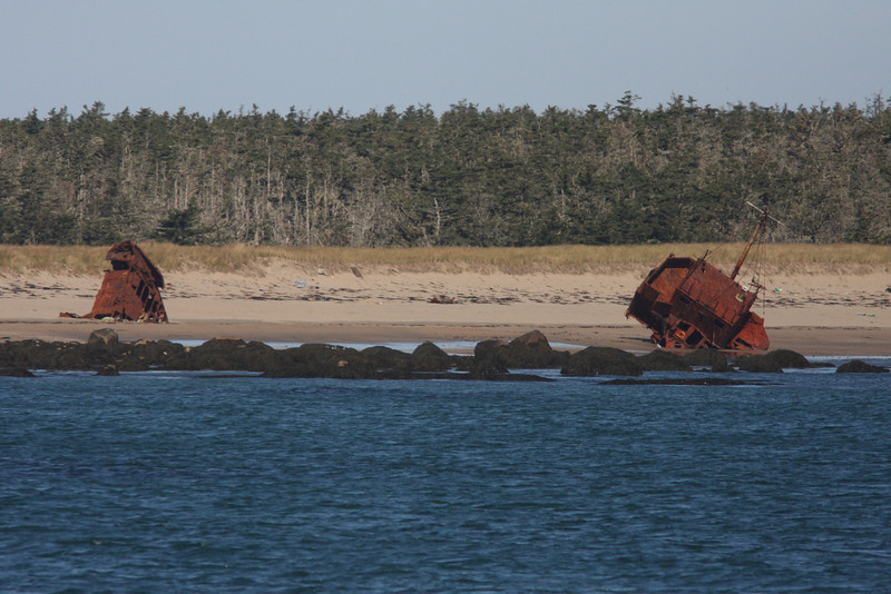 Remains of old drug ship grounded on beach, Seal Island, Sep 2008