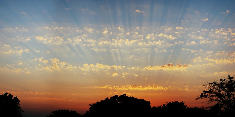 Beautiful display of evening sun rays. I was tickled to capture this effect!