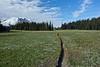 Mount Rainier 16 Grand Park N