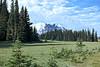 Mount Rainier 15 Grand Park N