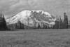 Mount Rainier 17 Grand Park N BW