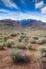 Steens Mountain Scenery