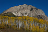 Marcellina Mountain stands above a grove of golden aspen trees along the Kebler Pass in Colorado.