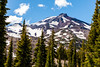 South Sister from Green Lakes