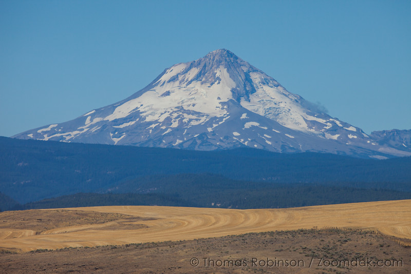 Mt. Hood, Late Summer, Horizontal