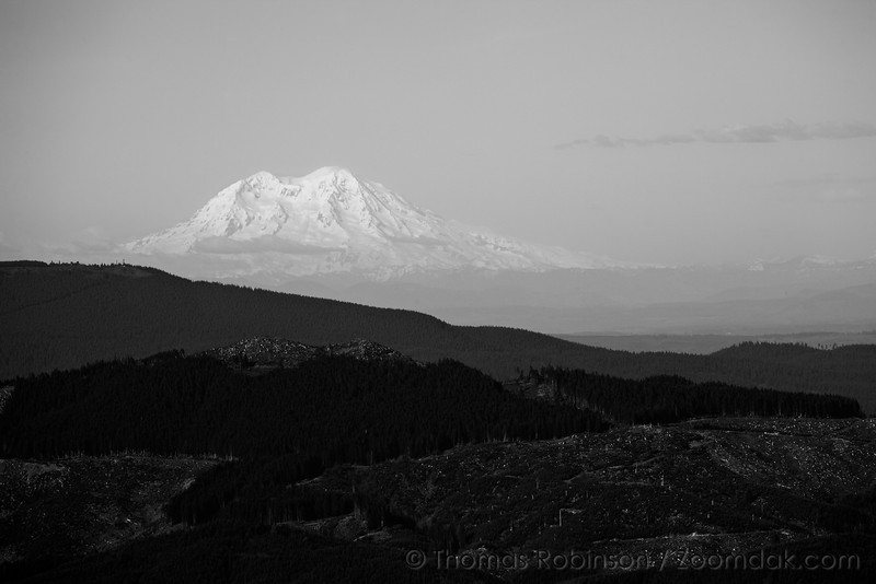Mt. Rainier, in Washington state, stands above the Oregon hills from the viewpoint at the top of Saddle Mountain.