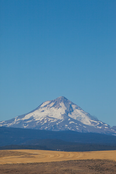 Mt. Hood, Late Summer, Vertical