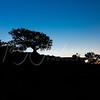 Silhouette on the North Rim