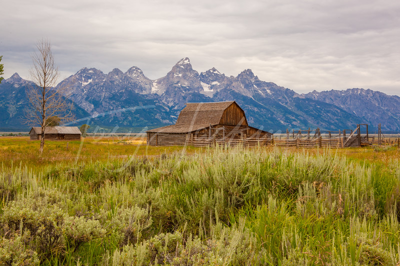 Barn on Mormon Road, Jackson Hole, Wyoming