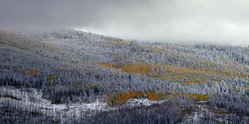 Fall storm clearing~Truchas Peaks. In the lower left corner the remains of trees burned in a spring forest fire.
