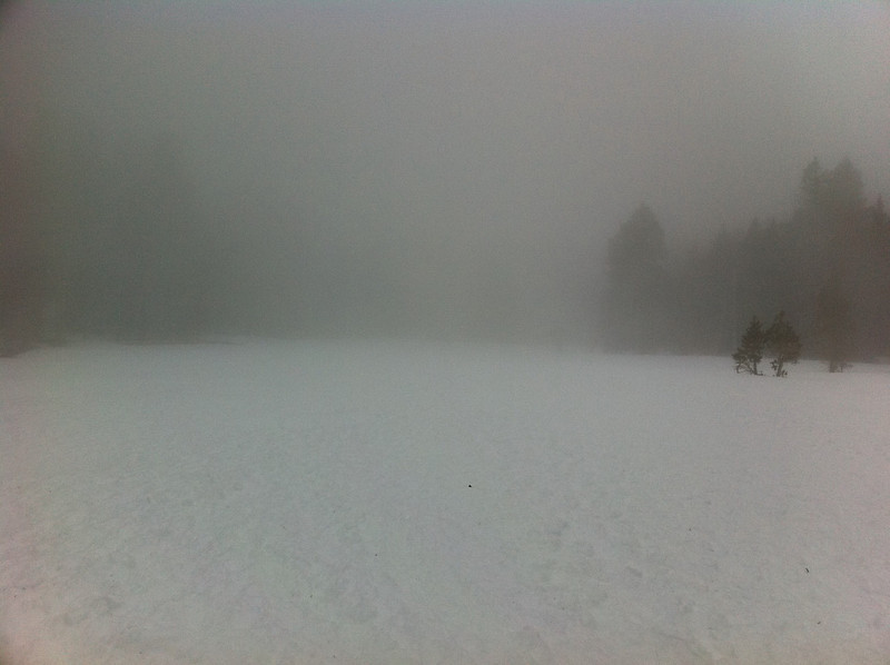 This was my first white-out and it was a bit unnerving being alone.
