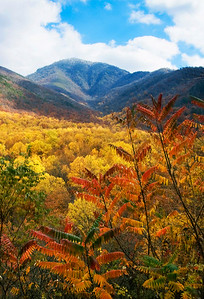 The view from Campbell Overlook along Newfound Gap Road, Great Smoky Mountains.