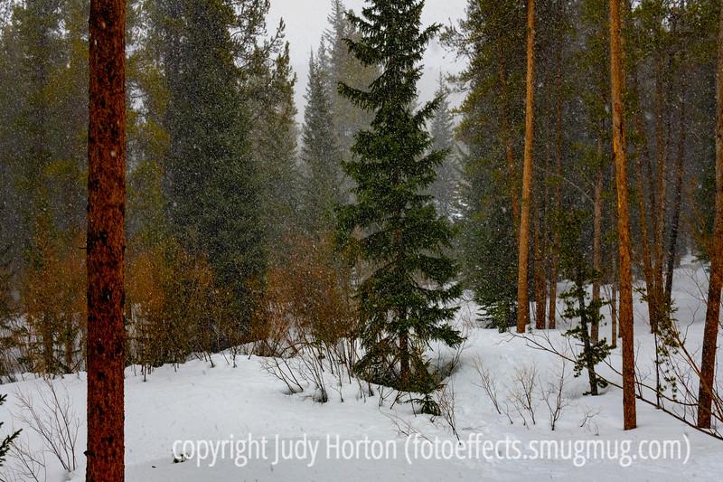 Snowstorm at Blue River, CO