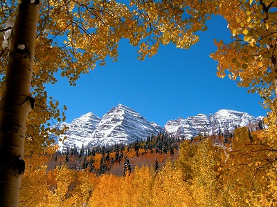 Maroon Bells through a window in the aspen trees.