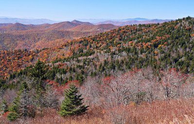 Fall view from the Blue Ridge Parkway, North Carolina.