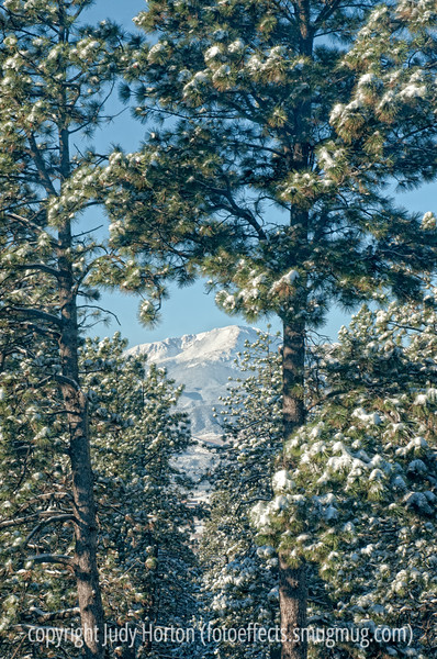 The view of Pike's Peak from my bedroom window; best viewed in the larger sizes