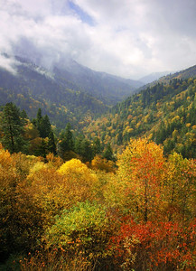 The view from Morton's Overlook, Great Smoky Mountains.