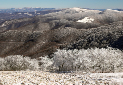 The view from Carver's Gap Trail on a very cold morning after a light snow.  Roan Mountain, North Carolina/Tennessee border.