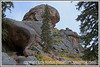 An interesting rock formation on the road to Spruce Grove Campground in Colorado in the autumn.
