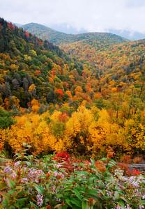 A fall scene along the Blue Ridge Parkway, western North Carolina.