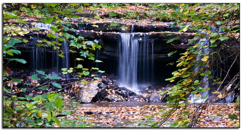 Near Pearson's Falls, NC