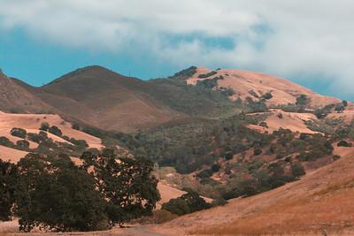 Mt. Diablo State Park September 2008