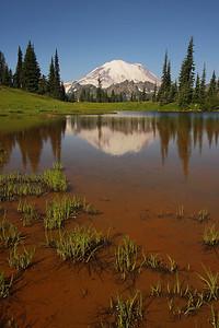 I know again - the upper Tipsoo lake.