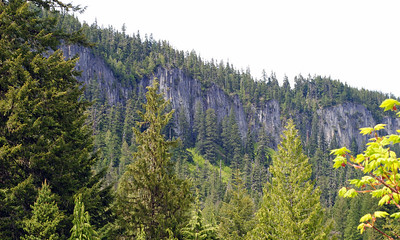 Cliffs along roadside leading to Mt. Ranier