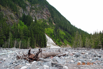 Creek bed at the foot of Mt. Ranier