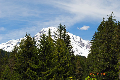 Mt. Ranier, Washington