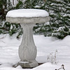 Frozen Bird Bath.