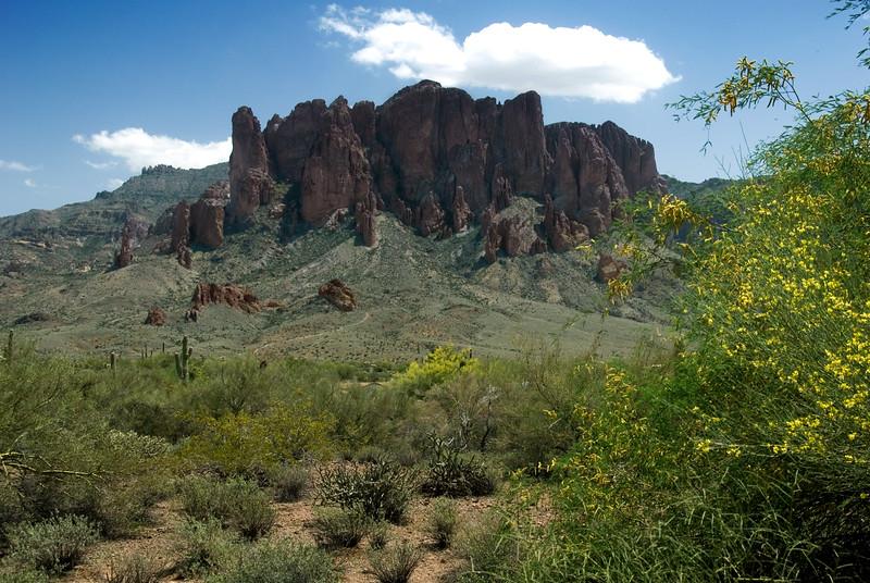 Copyright © 2007 Rick Kruer<br /> rickkruer.com<br /> <br /> Superstition Mountains east of Mesa, AZ in spring<br /> <br /> D200_2007-04-11DSC_0313-SuperstitionMtns-FlowersWide-4.psd