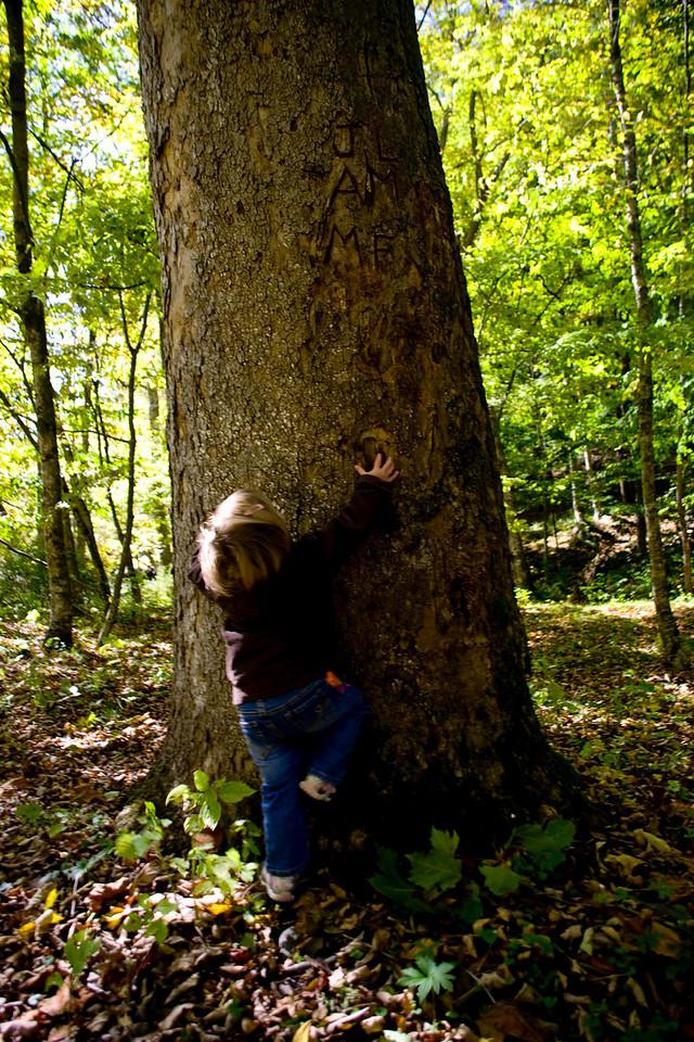 Riley tree huger - Peeka Moose_0072