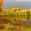 """ Heavenly Autumn """