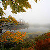 """Autumn in the Fog"""