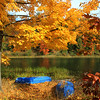 """Autumn at the Lake"""