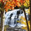 """Bond Falls - Autumn Leaves Spectacular"""