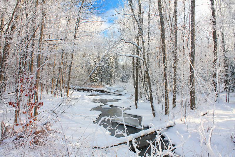 """ Where the Tree Tops Glisten "" Winter in Northern Wisconsin"
