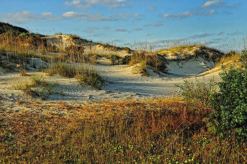 Dick-Caldwell-Dunes-at-Sunset-16-20-175 00
