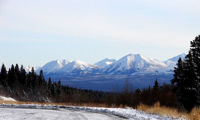 A small portion of the Mentasta Mountains, themselves a small part of the Alaska Range.  Noyes Mt. is the peak nearly obscured by the spruce tree on the right edge.