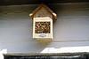 Steeds meer kamers bezet in het bijenhotel