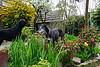 Fabio en Murphy in de tuin